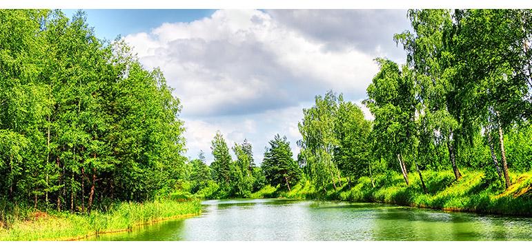 a gráfica e o meio ambiente - rio